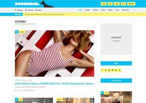 Doberman Viral WordPress Theme