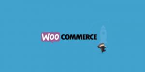 LifterLMS WooCommerce 2.0