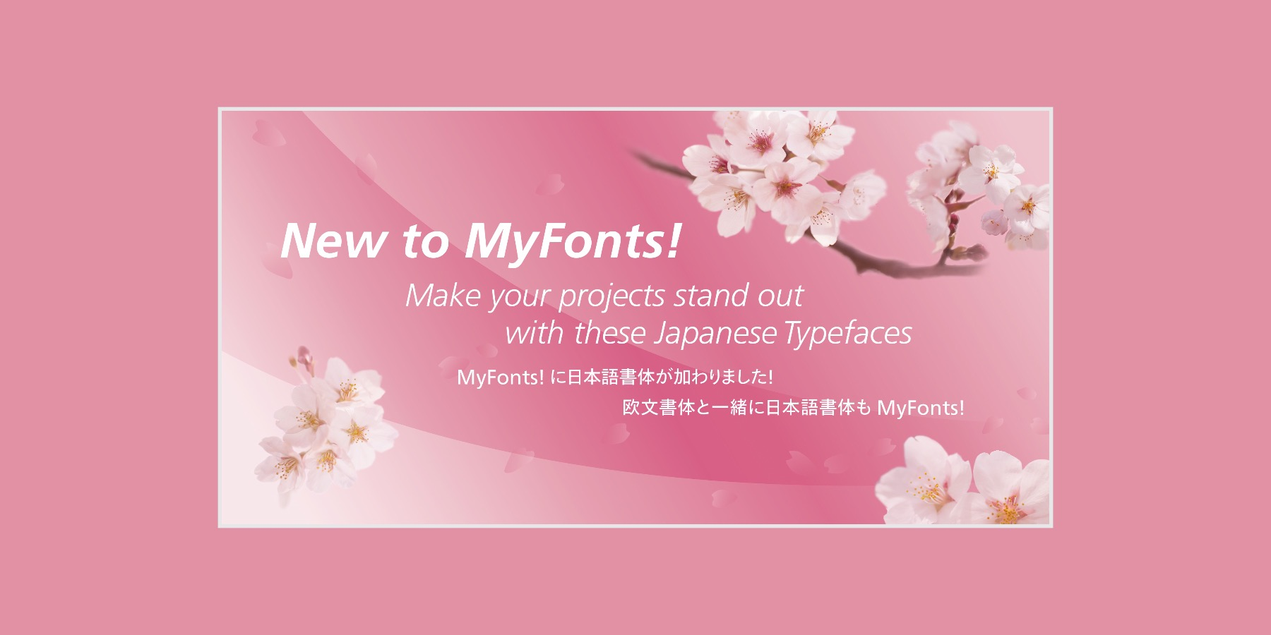 Japanese Typefaces
