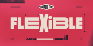 Flexible Variable