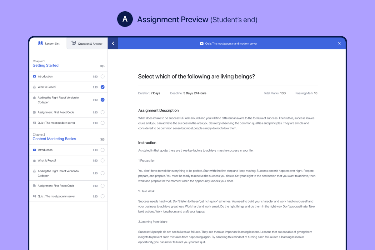 Assignment Preview